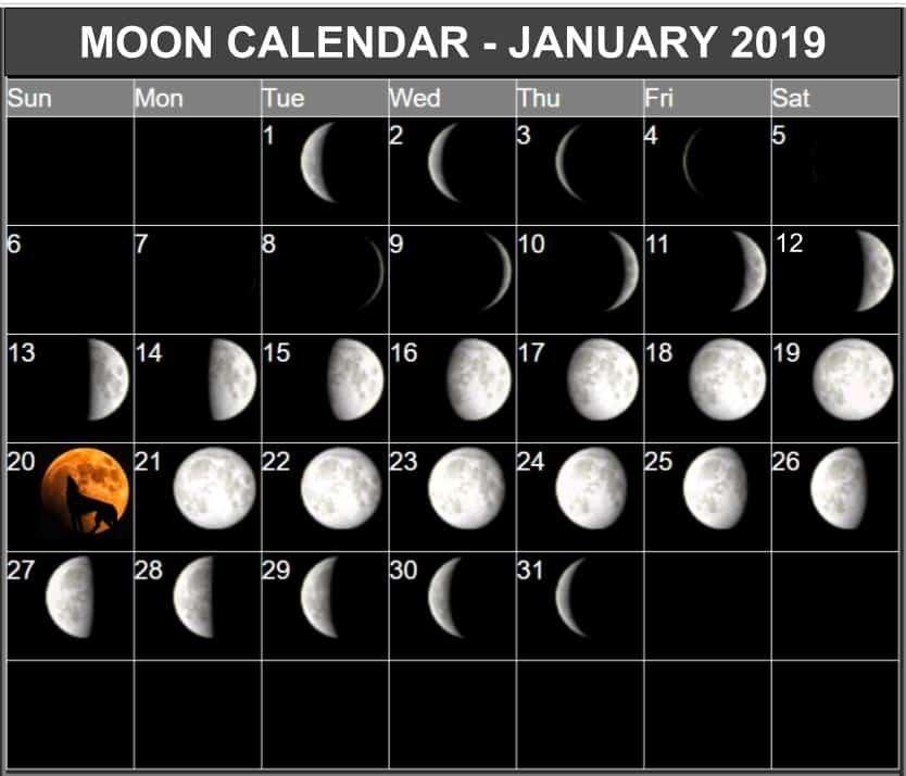 Moon Calendar January 2019