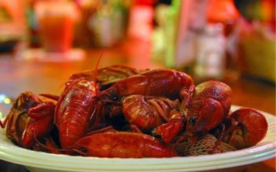Prices, Locations, and a Poll of Places Selling Boiled Crawfish in Southwest Louisiana